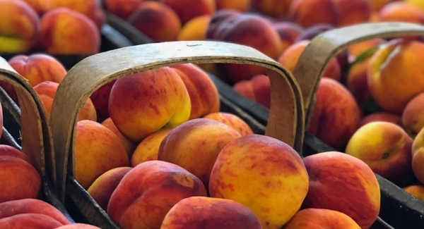 How to Make the Most of Juicy Local Peaches