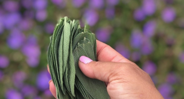 Things to Do With All That Sage